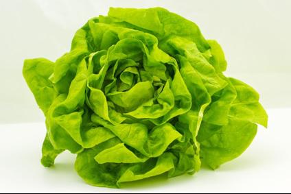 zelena salata i zdrava ishrana (3)