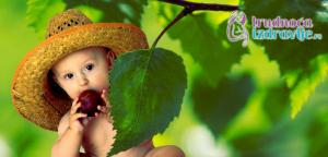 imunitet-u-drugoj-godini-deteta-clanak-4