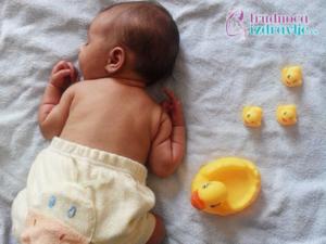 beba-antonina-krusevac