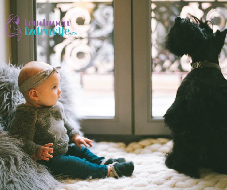 """Po """"higijenskoj hipotezi"""" prljavština i gliste su prijatelji izgradnje imunog sistema male dece."""