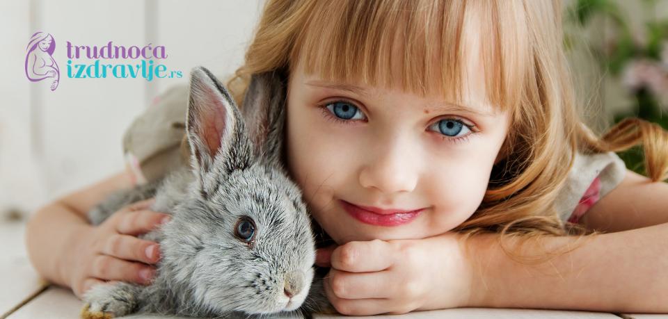 Kućni ljubimci i deca, koje su mere zaštite zdravlja i bolesti koje mogu da prenose.