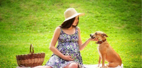 Zbog čega dolazi do proširenih vena u trudnoći