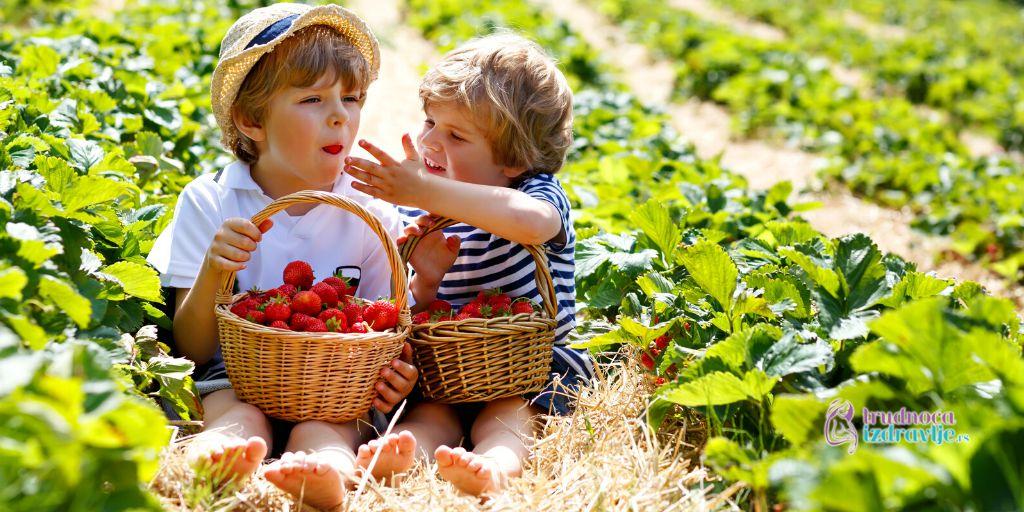 Zdrava ishrana – 20 Top Namirnica – Jagoda – Trudnoća i Zdravlje
