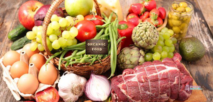 Prednosti organske hrane u ishrani trudnica i dojilja