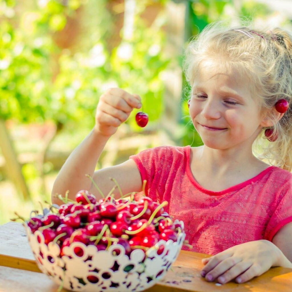 Prednosti organske hrane