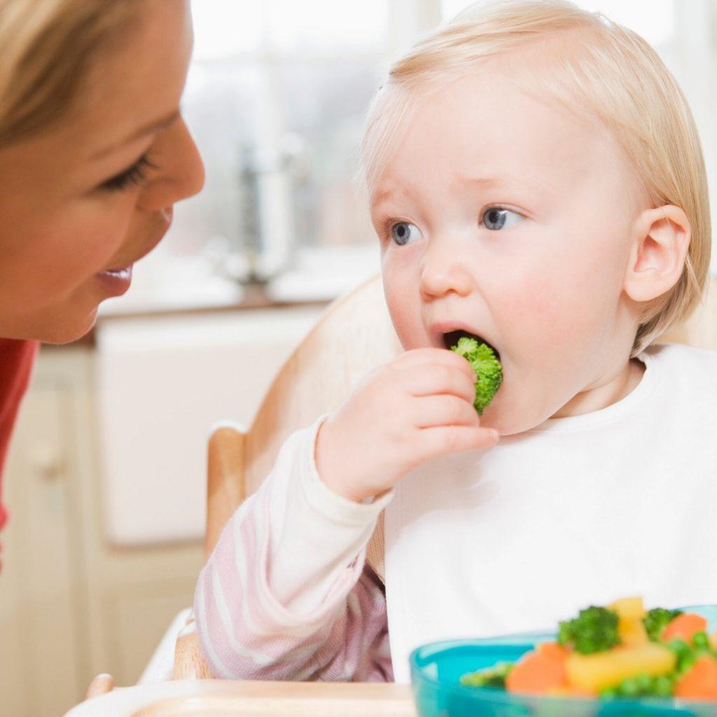 Gvožđe u ishrani odojčeta i dece (2)