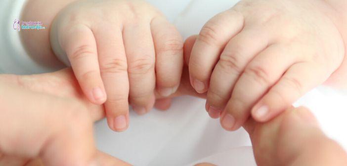 dojenje tokom trudnoće (1)