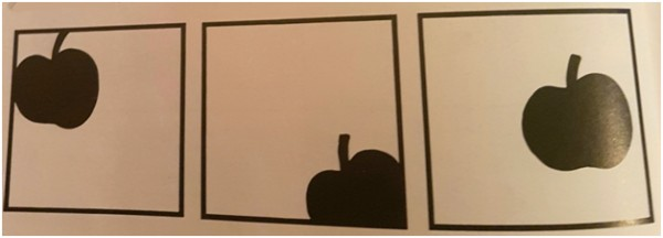 Vežba za pravilno postavljanje figure na crtežu