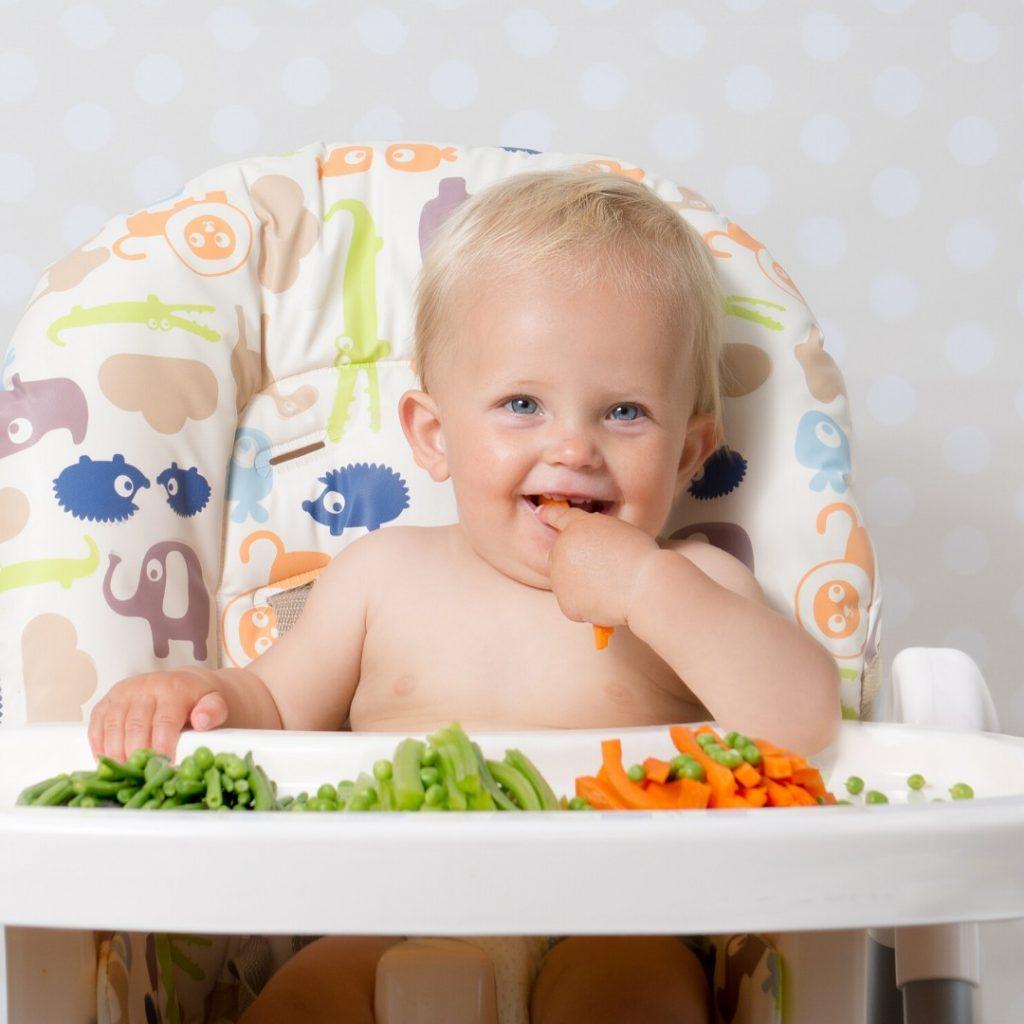 Gojaznost kod dece od najranijeg uzrasta do predškolskog uzrasta (2)